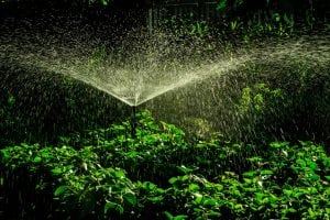 pawleys island sprinkler systems