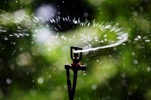 Georgetown sprinkler system